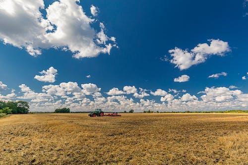 คลังภาพถ่ายฟรี ของ การเก็บเกี่ยว, การเกษตร, ชนบท