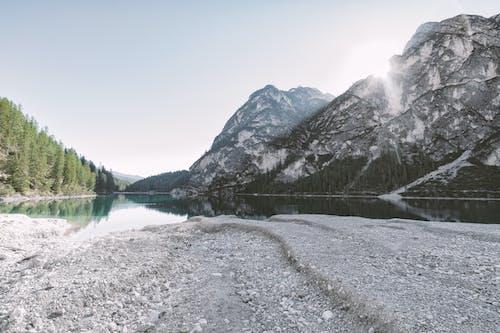冰, 冷, 反射, 天性 的 免費圖庫相片