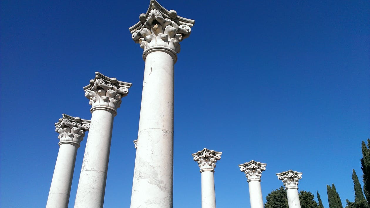 From below of aged white columns with carved ornaments among cypress trees under clear sky