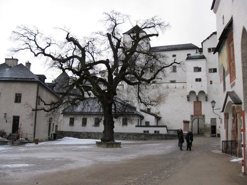 Aged fortress square with leafless tree