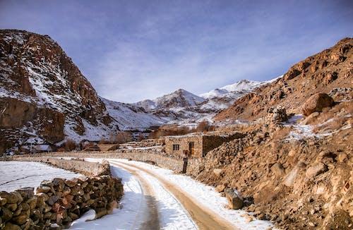 Photos gratuites de couvert de neige, enneigé, froid
