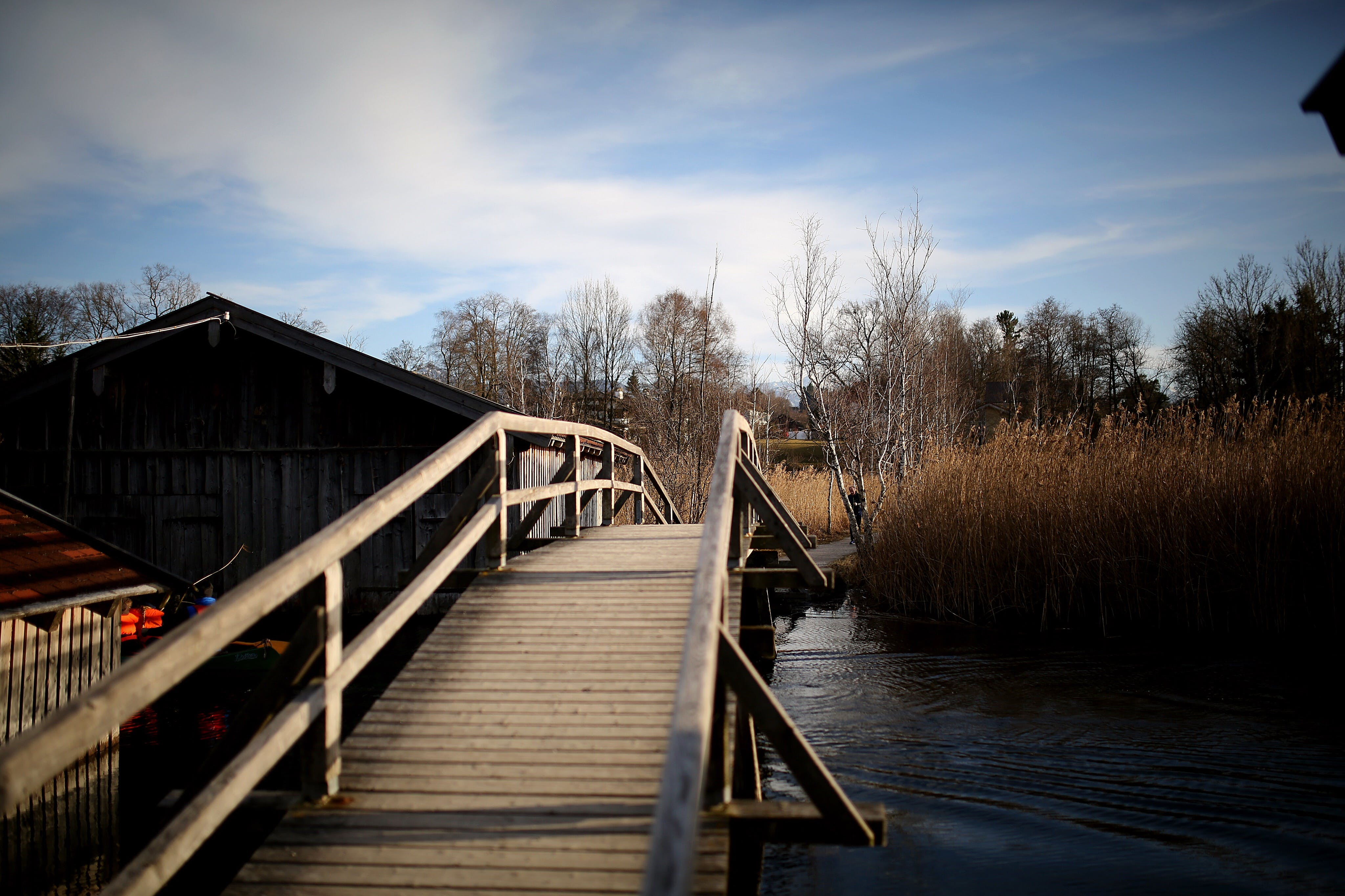 boardwalk, bridge, cabin