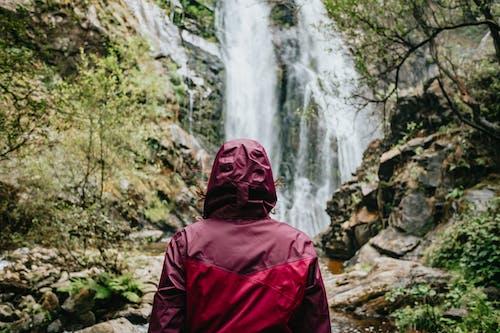 Foto profissional grátis de água, ao ar livre, árvore, aventura
