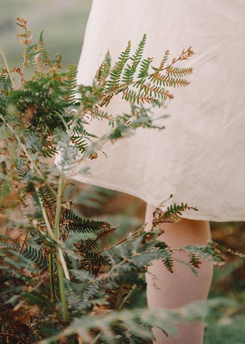 Crop unrecognizable female in linen dress promenading in park with verdant grass in summer