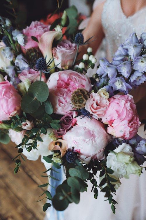 คลังภาพถ่ายฟรี ของ การจัดดอกไม้, การตกแต่ง, การหมั้น, การแต่งงาน