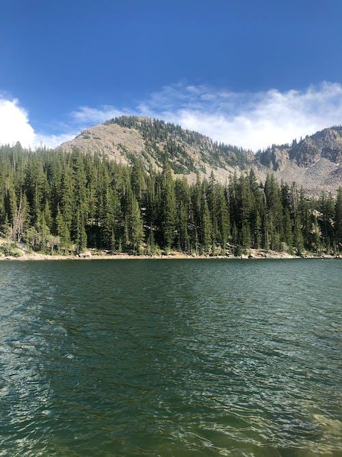 Kostnadsfri bild av berg, flod, landskap