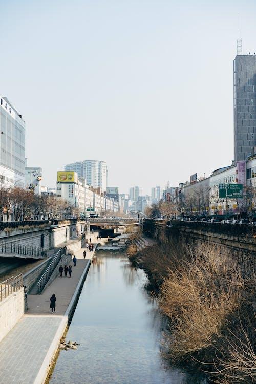 River Between High Rise Buildings