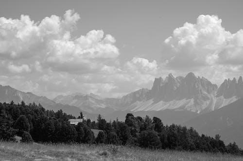 Základová fotografie zdarma na téma černobílý, denní světlo, hora