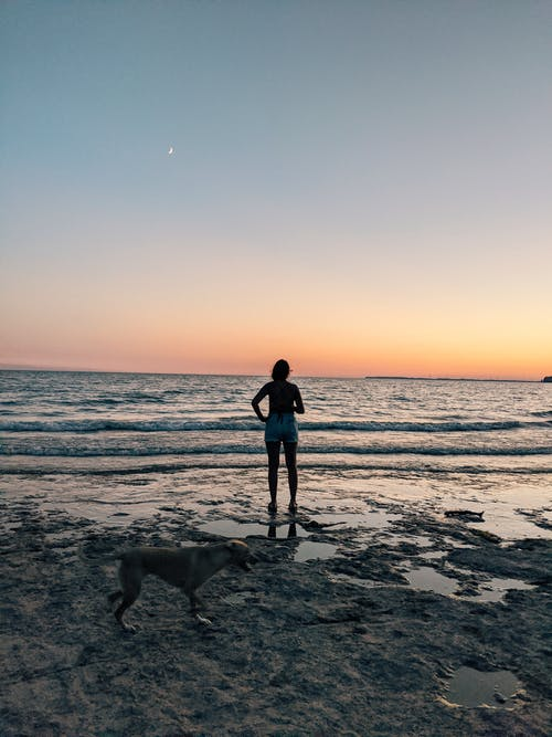 Full body of unrecognizable female standing with domestic dog and looking on bright sunset over calm ocean water
