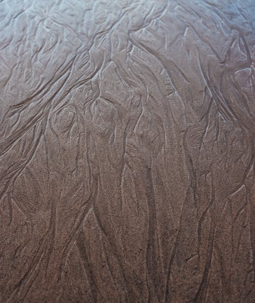 From above of textured backdrop of wooden material with carved image on shiny surface