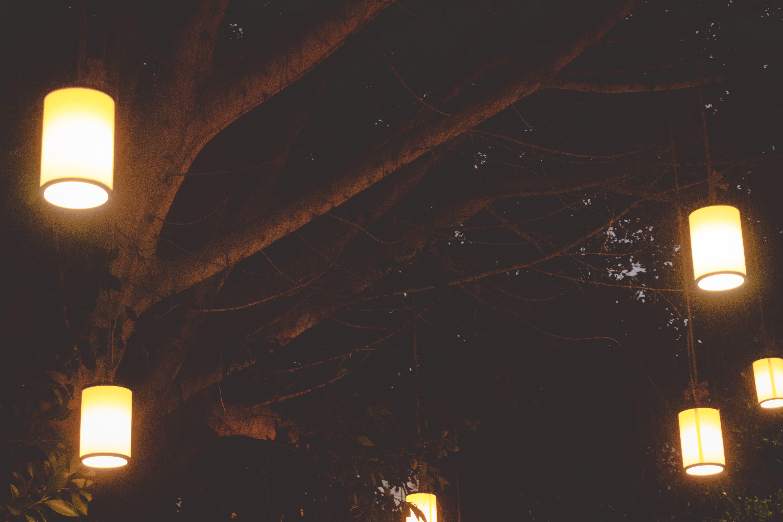 Základová fotografie zdarma na téma elektřina, jasný, lampion, noc