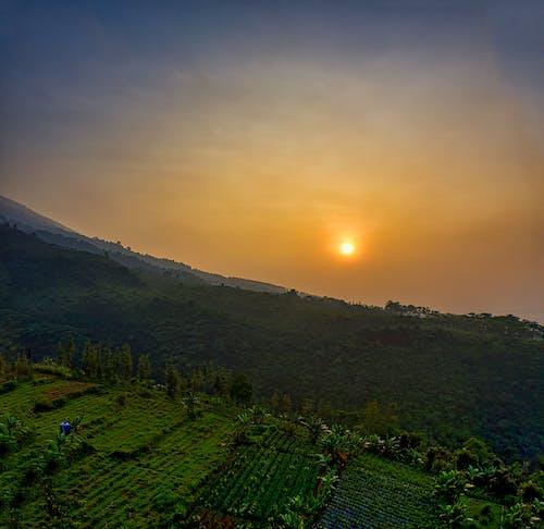 Sunset at a Farmland