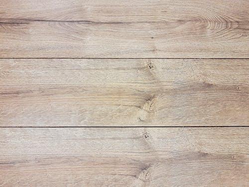 Fotos de stock gratuitas de árbol, áspero, carpintería, consejos