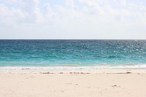 바하마, 엘레 우 테라, 해변의 무료 스톡 사진