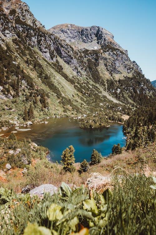 Gratis lagerfoto af alperne, bjerg, landskab