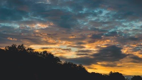 Fotos de stock gratuitas de amanecer, arboles, cielo, escénico