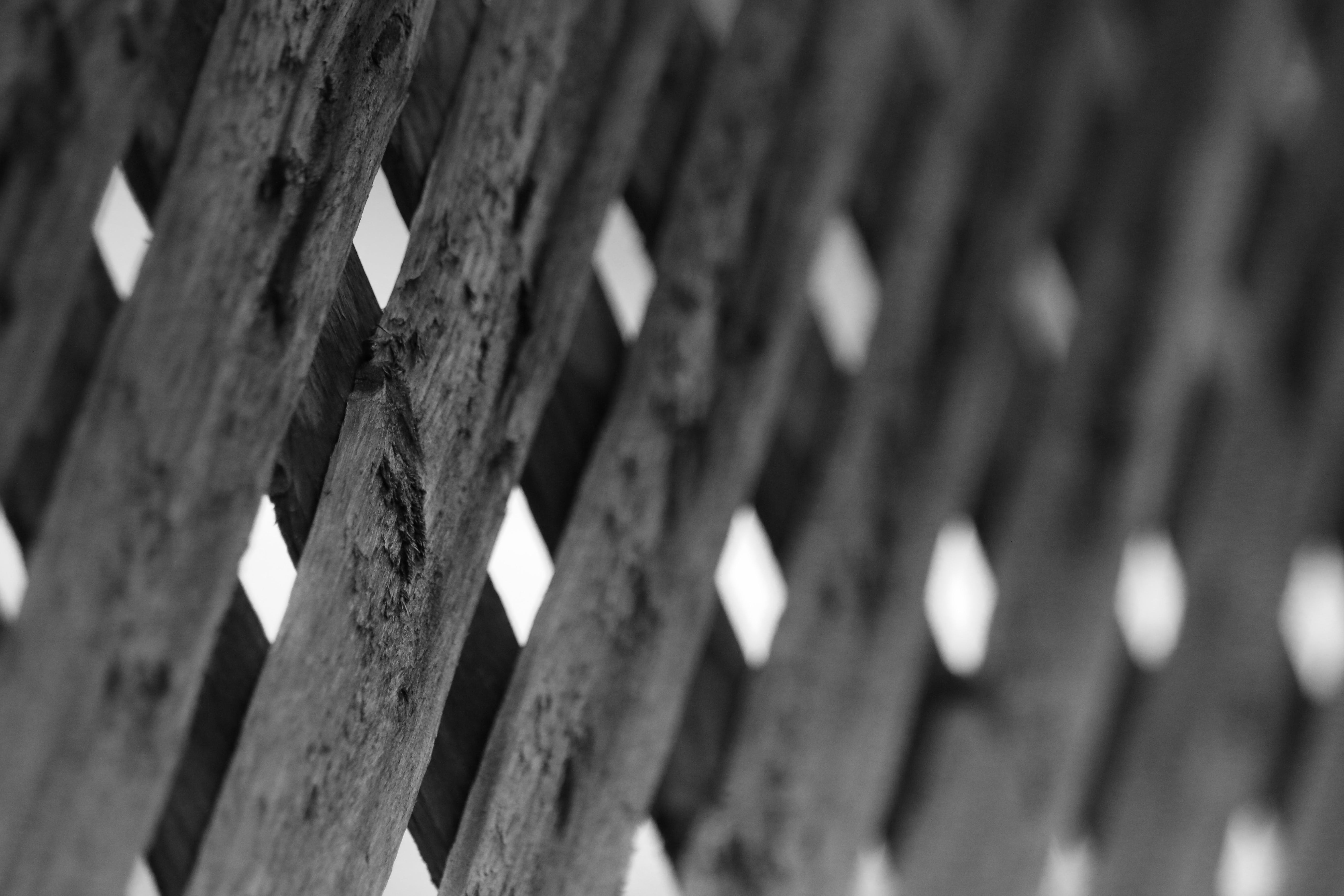 Free stock photo of canada, fence, gray, grayscale