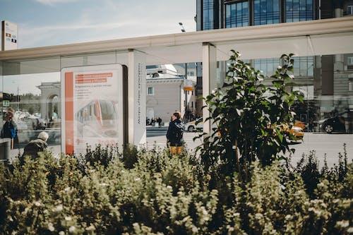 Бесплатное стоковое фото с архитектура, бизнес, биржа, город