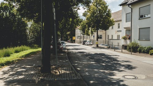 Gratis stockfoto met bomen, buitenkant, gebouwen, gevel