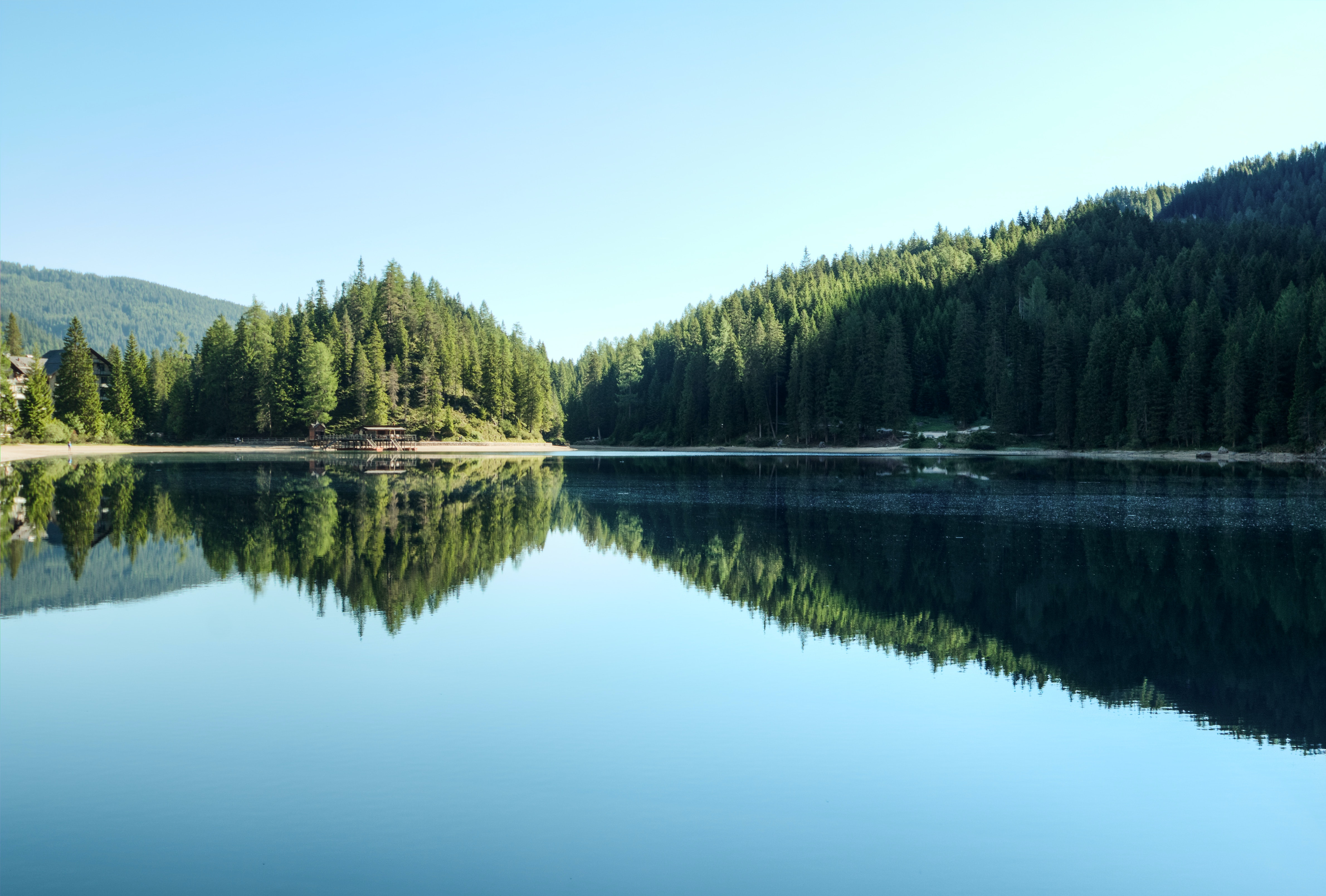 Donate Your Car >> Reflection of Trees in Lake · Free Stock Photo