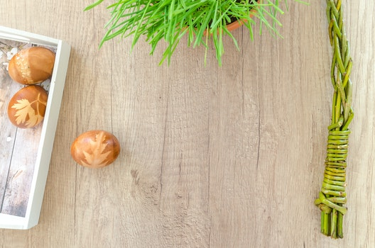 Free stock photo of wood, holiday, flowers, blue