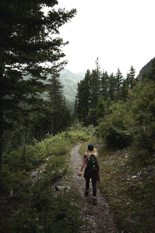 Woman in Black Jacket Walking on Forest