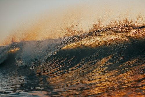 คลังภาพถ่ายฟรี ของ การสะท้อน, คลื่น, คลื่นในตอนเช้า, ชายหาด