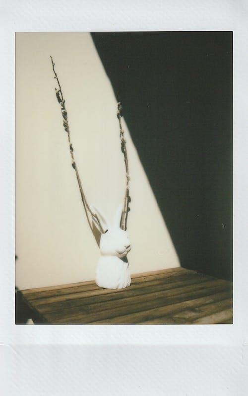 Fotos de stock gratuitas de conejito, Conejo, estatuilla, figurilla