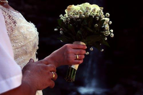 Foto profissional grátis de arranjo de flores, borrão, branco, buquê
