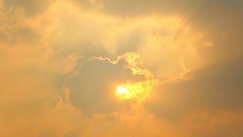 オレンジ, ゴールデン, ドラマチック, 光の無料の写真素材