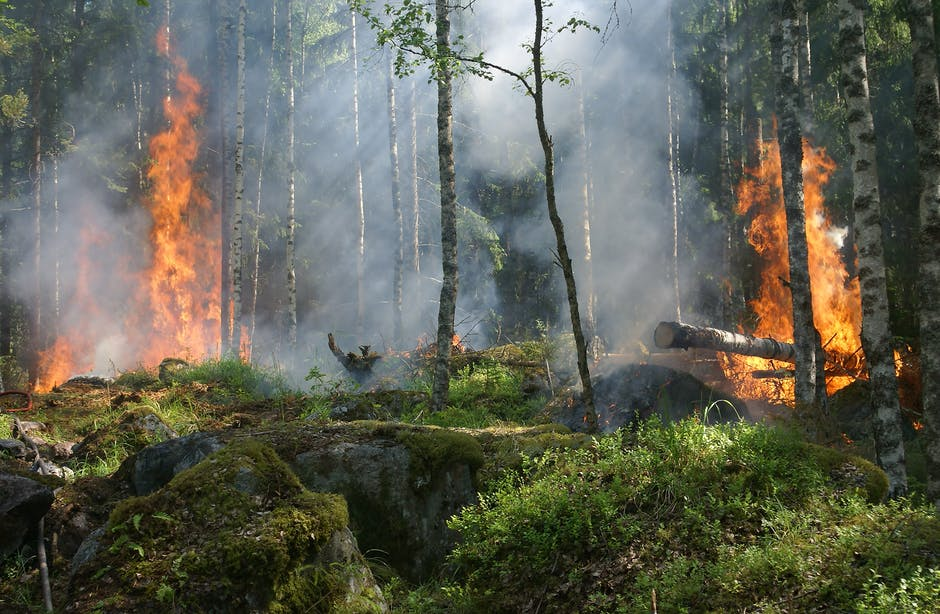 HOW TO PROTECT INDOOR AIR QUALITY DURING WILDFIRES