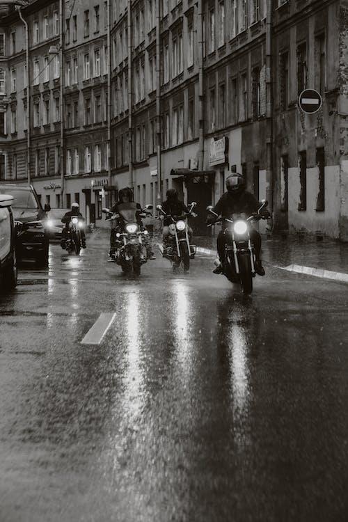 Imagine de stoc gratuită din alb-negru, asfalt, călăreți