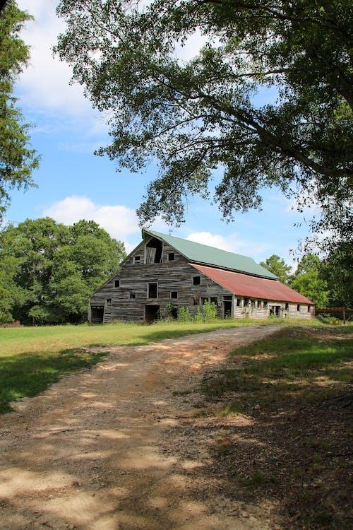 Wooden Barn House Near Green Trees Under Blue Sky