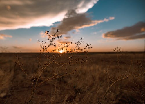 Free stock photo of sunset, texas