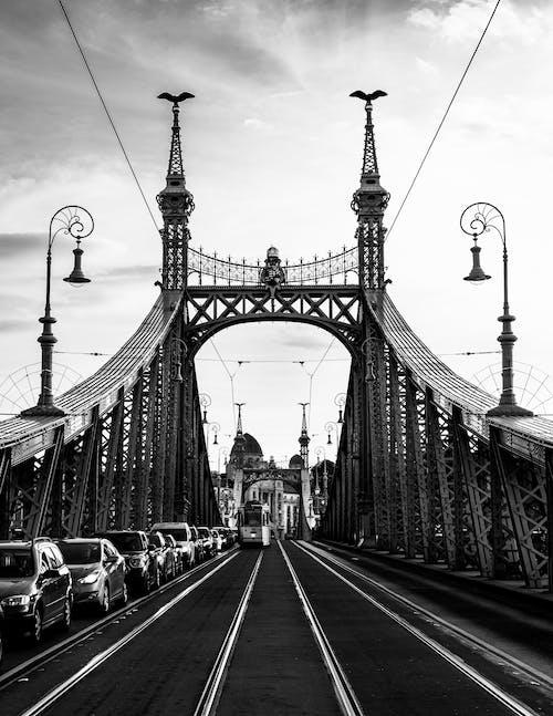 Grayscale Photo of Liberty Bridge in Budapest