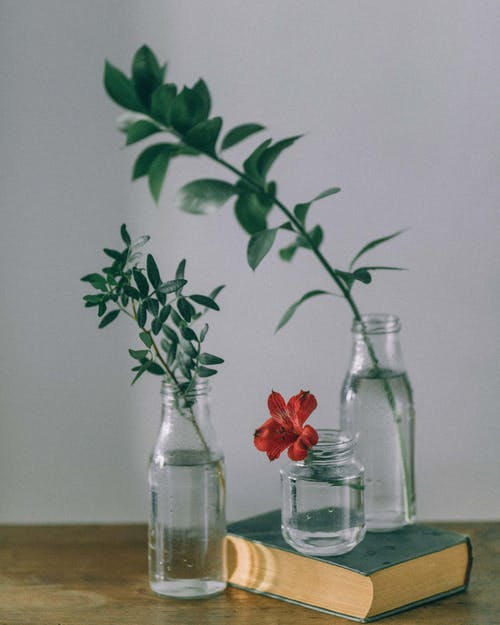 Red Roses in Clear Glass Vase