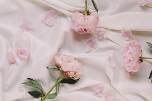 白いテキスタイルにピンクの花