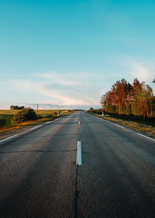 Бесплатное стоковое фото с автомобиль, асфальт, голубой, дорога