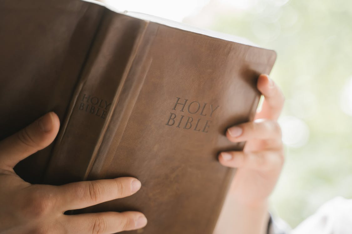 Person Holding Brown Leather Book
