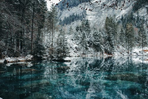 公園, 冬季, 冰 的 免费素材图片