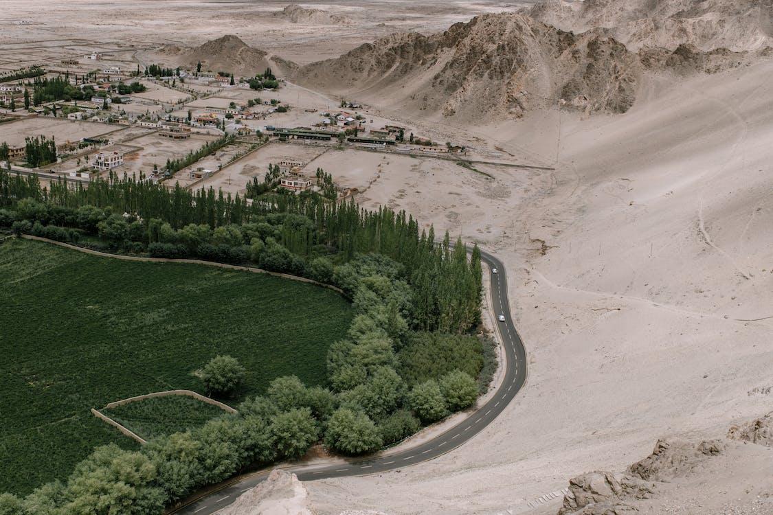 Green field near sandy terrain