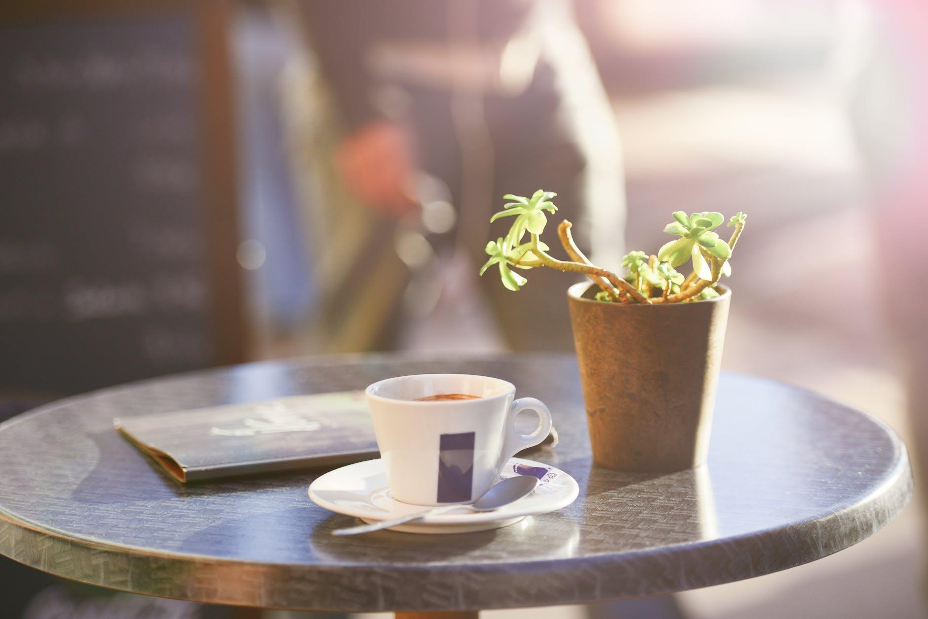 植木とコーヒーカップ