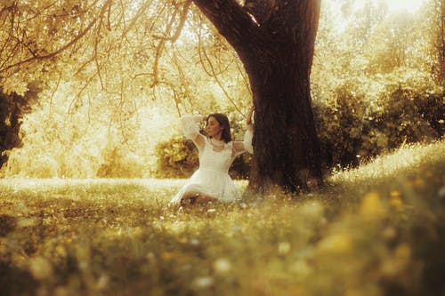 Stylish dreamy woman on lawn near tree