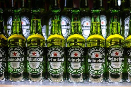 Free stock photo of alcoholic beverage, beer, beer bottles