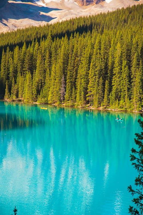 Türkisfarbener See Zwischen Den Mit Wald Bedeckten Hügeln