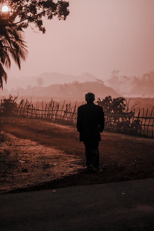 Silhouette of anonymous person in casual clothing walking on sandy road along simple wooden fence under foliage in village in daytime