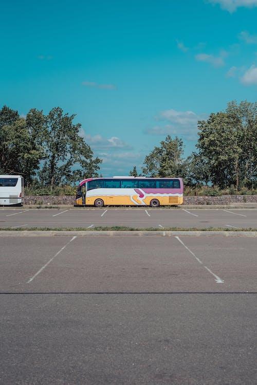 Gratis stockfoto met asfalt, auto, autobus, boom