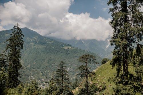 Thung Lũng Núi Tuyệt Vời Với Những Cây Linh Sam Xanh Và Ngôi Làng Nhỏ