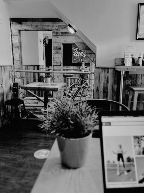 Potted plant and laptop on table in cafe