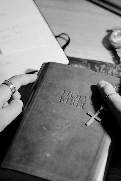 Fotos de stock gratuitas de acredite em deus, adulto, Biblia, composición
